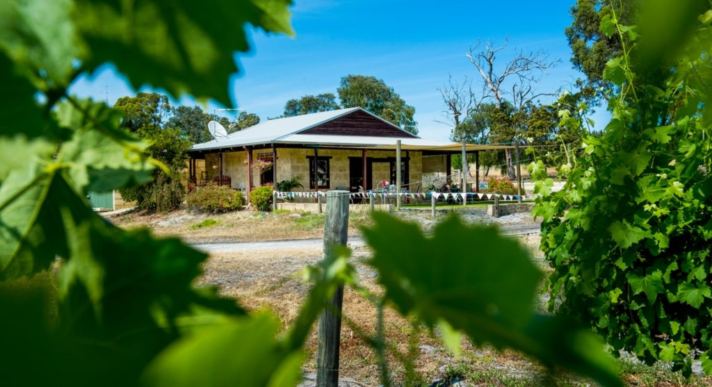 Vineyard 28 - Harvey Western Australia