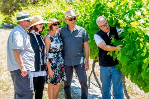 Winemaker Mark with visitors on a vineyard walk.