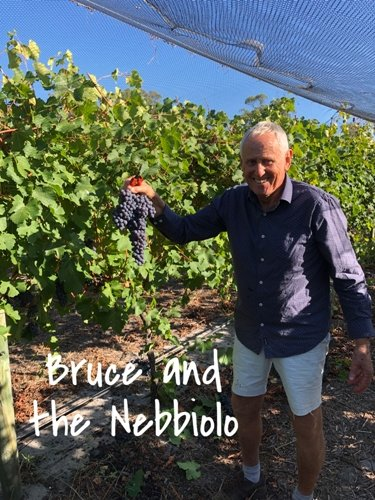 Bruce and the Nebbiolo