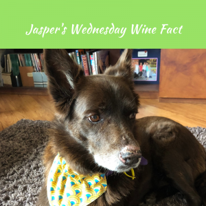 Jasper Wednesday Wine Fact